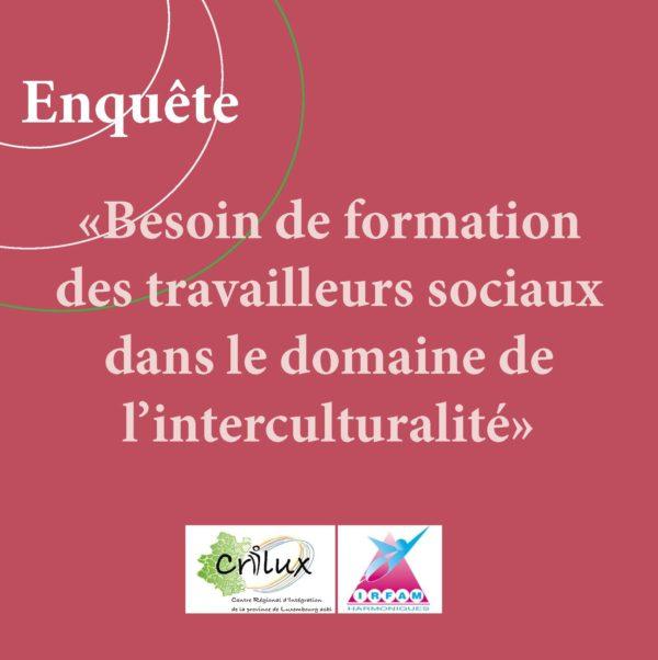 Enquête : Besoin de formation des travailleurs sociaux dans le domaine de l'interculturalité